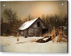 Old Homestead Barn Acrylic Print by Mary Timman