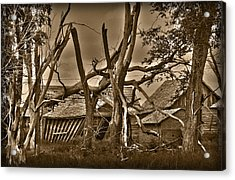Old Homestead Acrylic Print by Shane Bechler