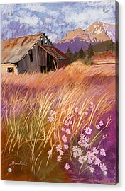 Old Land Trust Barn Mount Shasta Acrylic Print