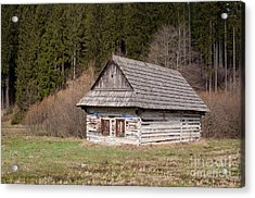 Acrylic Print featuring the photograph Old Log House by Les Palenik