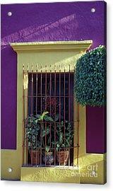 Acrylic Print featuring the photograph Old Mazatlan Window by John  Mitchell
