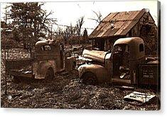 'old Pickup Trucks' Acrylic Print by Michael Lang