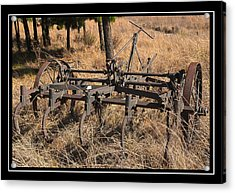 Old Plough Acrylic Print by Miguel Capelo