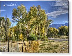 Old Ranch Near Bishop Acrylic Print by Michele Cornelius