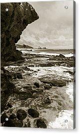 Old Rock Acrylic Print
