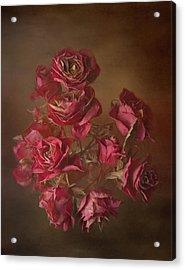 Old Roses Acrylic Print by Karen Martin