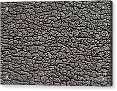 Acrylic Print featuring the photograph Old Rubber Tire Surface  by Les Palenik
