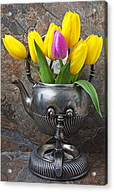 Old Tea Pot And Tulips Acrylic Print