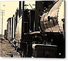 Old Unused Train Acrylic Print by Elizabeth  Doran