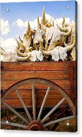 Old Wagon Full Of Buffalo Skulls Acrylic Print by Garry Gay