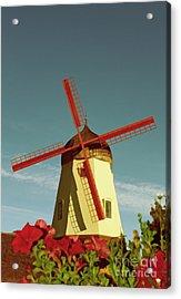 Old Windmill  Acrylic Print by Paul Topp