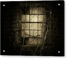 Old Window Acrylic Print by Michael L Kimble