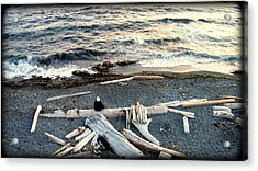 Old Woman And The Sea Acrylic Print by Judy Garrett