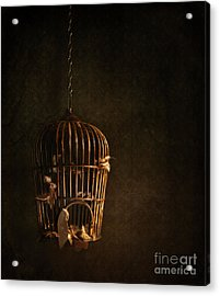 Old Wooden Bird Cage With Feathers Acrylic Print by Sandra Cunningham