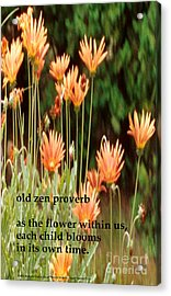 Old Zen Proverb Acrylic Print by Richard Donin