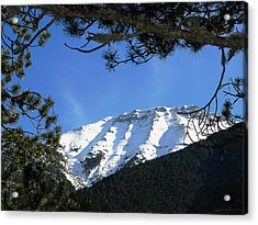 Olympos Through Firs Acrylic Print by Andonis Katanos