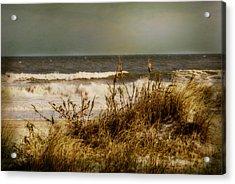 On The Beach Acrylic Print by Mary Timman
