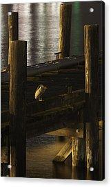 On The Dock Acrylic Print