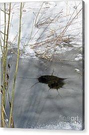On The River. Heart In Ice 02 Acrylic Print by Ausra Huntington nee Paulauskaite