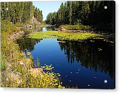 On The Way To East Lunch Lake Acrylic Print by Larry Ricker
