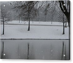 On This Winter Day Acrylic Print by Shawn Hughes