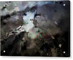 Once He Flew High Acrylic Print by Gun Legler