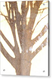 Once Upon A Tree Acrylic Print