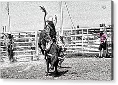 One Buck At A Time Acrylic Print by Rachelle Rice
