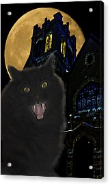 One Dark Halloween Night Acrylic Print by Shane Bechler