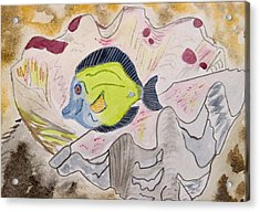 One Fish Acrylic Print by Charlotte Hickcox