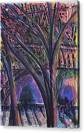 Onlooker Acrylic Print by Robert M Sassi