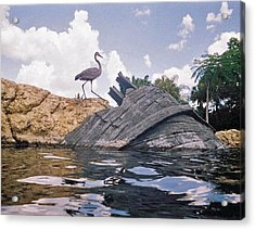 Only Memories Acrylic Print by Elisia Cosentino