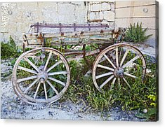 Only One Previous Owner Acrylic Print by Kantilal Patel