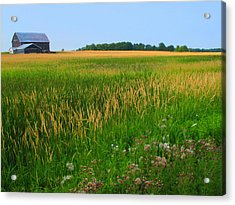 Ontario Farm  Acrylic Print by Lyle Crump