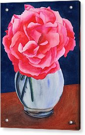 Opera Rose Acrylic Print by Ken Powers