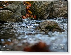 Opposite Shore Acrylic Print by Susan Herber