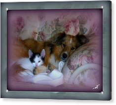 Acrylic Print featuring the photograph Opposites Attract by Michelle Frizzell-Thompson