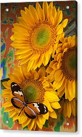 Orange Black Butterfly And Sunflowers Acrylic Print by Garry Gay
