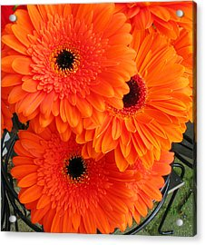 Orange Burst Acrylic Print