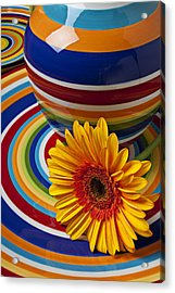 Orange Daisy With Plate And Vase Acrylic Print by Garry Gay
