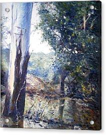 Orara River In Flood Nsw Australia 1998 Acrylic Print by Enver Larney