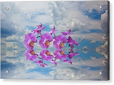 Acrylic Print featuring the photograph Orchid Sky by Sarah McKoy
