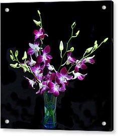 Orchid Spray. Acrylic Print