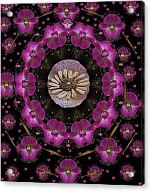 Orchids And Fantasy Flowers Acrylic Print