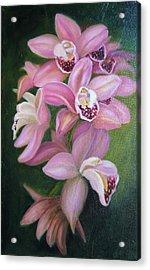 Orchids Acrylic Print by Marlyn Boyd