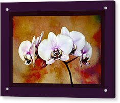 Acrylic Print featuring the painting Orchids by Mary Morawska
