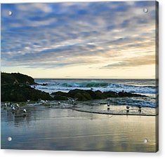 Oregon Coast At Dusk Acrylic Print by Bonnie Bruno