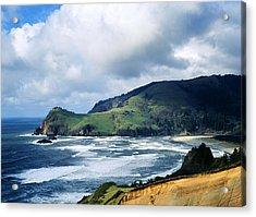 Oregon Coast Cliffs Acrylic Print by Elias Carlson