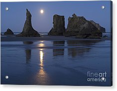 Oregon Coast Acrylic Print by John Shaw and Photo Researchers