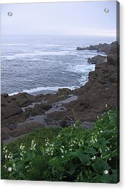 Acrylic Print featuring the photograph Oregon Coast Near Depoe Bay by Karen Molenaar Terrell